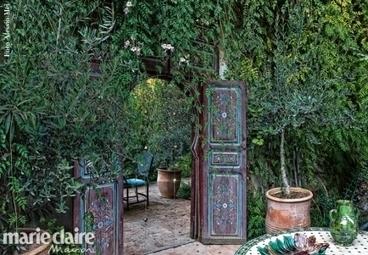 Un giardino tropicale a Marrakesh - marieclaire.it | Gli alberi nei giardini | Scoop.it