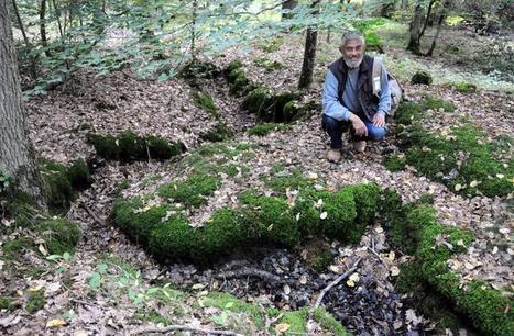 Loir-et-Cher - Des tranchées de la guerre dormaient sous la forêt | Nos Racines | Scoop.it