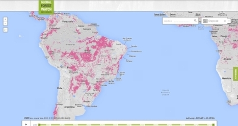Google lança site com observatório mundial do desmatamento | Geoprocessing | Scoop.it