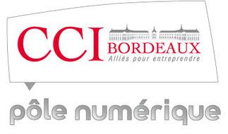 Recherche et veille sur Internet, les outils qui font gagner du temps ! par la CCI de Bordeaux | Vedocci | Astuces, techniques de recherche d'informations | Scoop.it