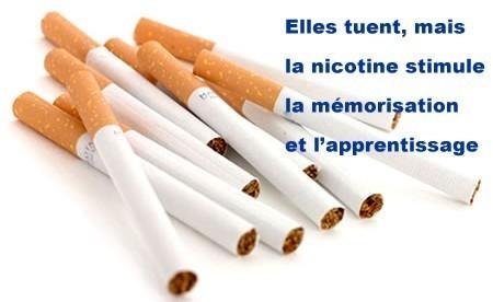 Nicotine et mémorisation | Cerveau et mémoire | Scoop.it