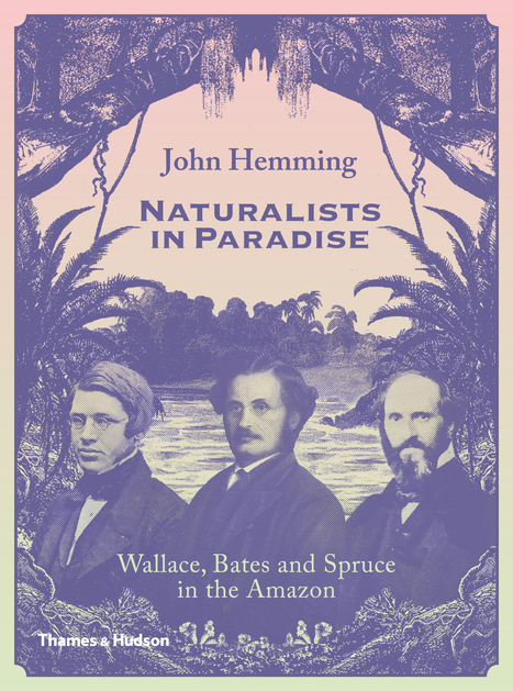 Naturalists in paradise | Rainforest EXPLORER:  News & Notes | Scoop.it
