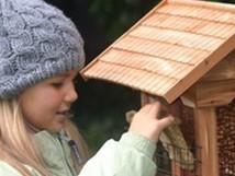 Avec quoi équiper la cage des oiseaux ? | ptasonline | Scoop.it
