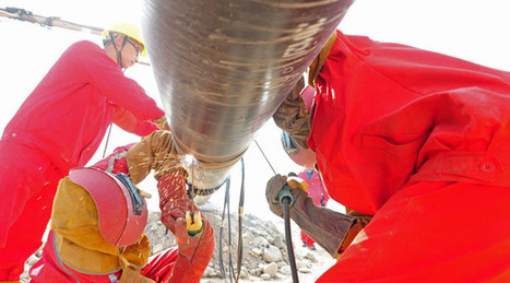 Not a bang, but a whimper - China Shale Gas | China Commentary | Scoop.it