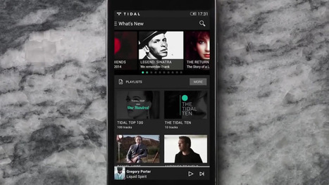 Jay Z's Tidal Catches Up To Competition With Launch Of A Family Plan | MUSIC:ENTER | Scoop.it