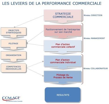 PERFORMANCE COMMERCIALE DE L'ENTREPRISE - Com-Ace Nantes Conseil Stratégie et Performance Commerciale | performance financière 11 | Scoop.it