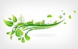 La transition énergétique est « irréversible » estime le WWF | Informations générales et politiques environnementales, RSE | Scoop.it