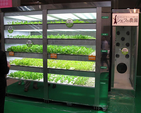 On Our Urban Ag Radar: Hydroponic Vending Machines; Oasis Grower Solutions for Anxious Growers; Living Within a Vertical Farm | Towards A Sustainable Planet: Priorities | Scoop.it