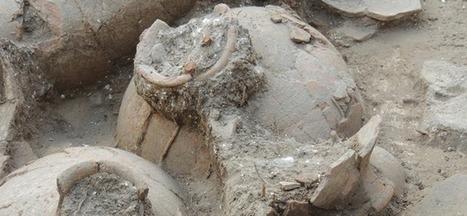 Une cave à vin vieille de 3700 ans découverte en Israël - Journal de la Science | Institutions et associations arts et archéologie Wallonie-Bruxelles-Belgique-Europe | Scoop.it