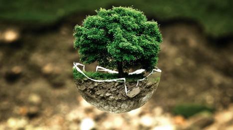 Sur 570 minutes de débat à la primaire de droite, 7 ont été consacrées à l'écologie ! | Revue de presse écologiste | Scoop.it