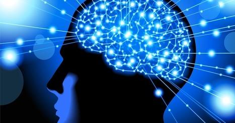 'Brain Friendly' Website Design Attracts More Viewers   Design   Scoop.it