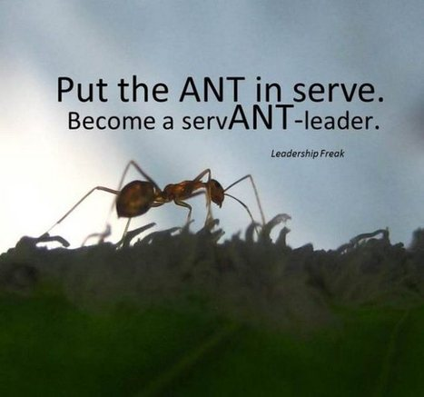 7 Powerful Qualities of Servant-Leaders | Executive Coaching Growth | Scoop.it