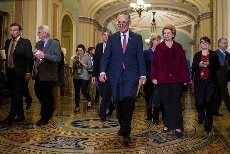 Democrats See Medicare as Winning Wedge Issue   Insurance News   Scoop.it