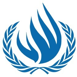Human Rights Council to discuss DRC | Sexual violence in conflict situations | Scoop.it