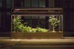 """Plant-in City"" Stackable Terrariums 