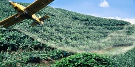 Pétition contre l'épandage aérien  de produits TOXIQUES en Guadeloupe | Gaia news | Scoop.it