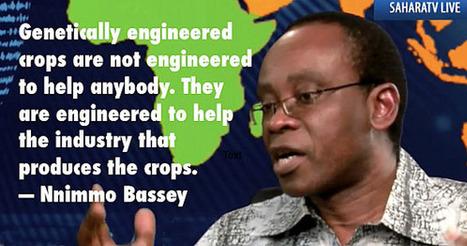 5 Million Nigerians Oppose Monsanto's Plans to Introduce GMO Cotton and Corn   Questions de développement ...   Scoop.it