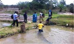 Fish farming in limbo; funding delays projects - GhanaWeb | Aquaculture Directory | Scoop.it