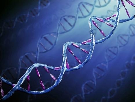 La psicoterapia può riparare i geni danneggiati dai traumi | Psicologia sistemica | Scoop.it