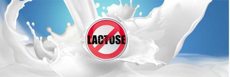 Intolérance ou allergie au lactose ? | Manger autrement - S'informer | Scoop.it