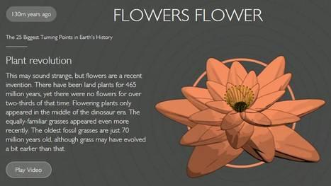 The 25 biggest turning points in Earth's history (from BBC Earth) | Biología de Cosas de Ciencias | Scoop.it