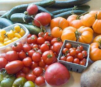 Practical Farming Tips For Healthy Horticulture   Small Kitchen Garden Tips and Tricks   Garden Designer   Scoop.it
