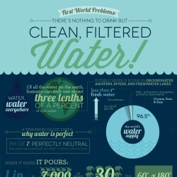 First World Problems: There's Nothing To Drink But Clean, Filtered Water! | Visual.ly | IB&A Level Geography | Scoop.it