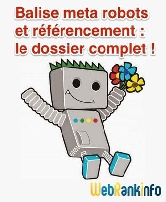 Balise meta robots et référencement : tuto complet ! | Bonnes Pratiques Web | Scoop.it