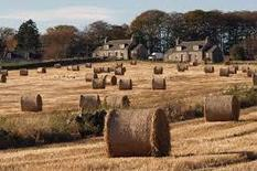 A sustainable future for our rural communities | Alison Johnstone MSP | Politics Scotland | Scoop.it
