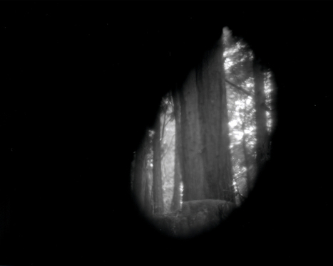 Site-Specific Pinhole Cameras Constructed From Nature Capture the Pacific Northwest | CLOVER ENTERPRISES ''THE ENTERTAINMENT OF CHOICE'' | Scoop.it
