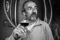 Jean-Yves Bardin | Photographe du vin, de la nature et de l'homme | Culture Vin | Scoop.it
