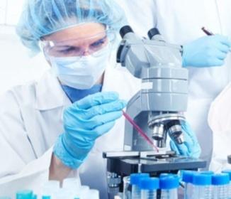 ALS Disease Involves Cells Other Than Motor Neurons | #ALS AWARENESS #LouGehrigsDisease #PARKINSONS | Scoop.it