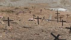 Haïti : « Assistance mortelle », de Raoul Peck. L'aide humanitaire en ... - outre-mer 1ère | Haiti un échec pour la communauté internationale | Scoop.it