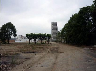 Quoi de neuf en 2013 côté jardin? - Paris.fr | Patrimoine Végétal et Biodiversité | Scoop.it
