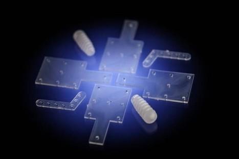 El biovidrio como soporte de la regeneración ósea | PROYECTOS DE TECNOLOGÍA | Scoop.it