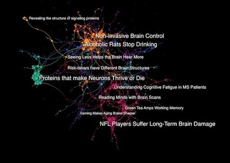 Journey Through the Brain: MIT Neurotech | Expeditions, Scientific American Blog Network | Social Neuroscience Advances | Scoop.it