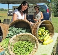Number of farmers markets up almost 10 percent over the last year | Suburban Land Trusts | Scoop.it
