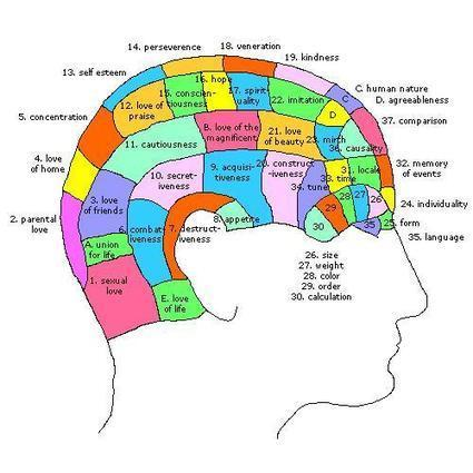 Personality Tests: Modern-Day Phrenology | Creatology: creative thinking in action | Scoop.it
