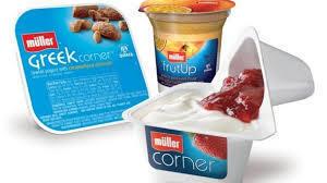 Celebrity cachet creates buzz for yogurts US launch | International Dairy Market Insights | Scoop.it
