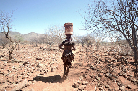 Namibia battles worst drought in decades   Environment.   Scoop.it