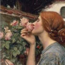 Antique Heirloom and Old Garden Roses: Categories & Characteristics | Gardening with Heirloom Plants | Scoop.it