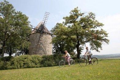 Tourisme : un taux de réservations pour les gîtes plus haut que l'an dernier | Professionnels du tourisme - Nogaro en Armagnac | Scoop.it