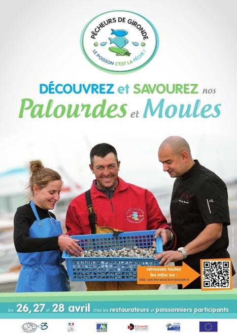 Découvrez et savourez nos palourdes ! | Tourisme sur le Bassin d'Arcachon | Scoop.it