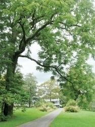 Horticulture sur la route - Le Devoir (Abonnement) | Atelier Jardin de la Gimbrère | Scoop.it