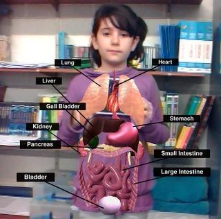 Una propuesta innovadora para trabajar el cuerpo humano. - | Bitácora de una profesora digital | Scoop.it