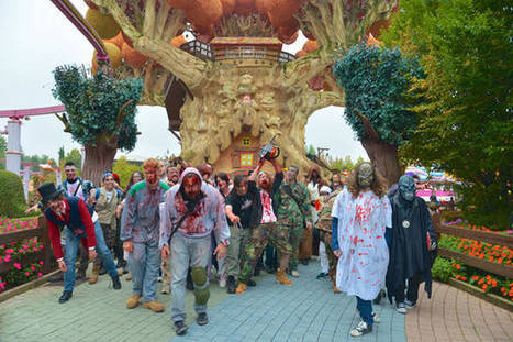 Halloween all'italiana, fra castelli e acquari - ANSA.it | Guest House in ROME | Scoop.it