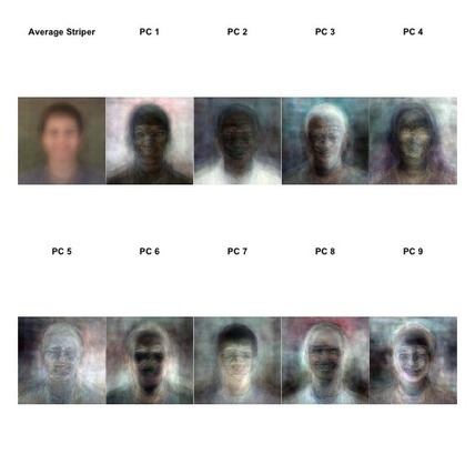 The average employee face photo | Data is big | Scoop.it