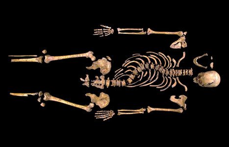 Scholars Say Bones Belonged to Richard III | Sizzlin' News | Scoop.it