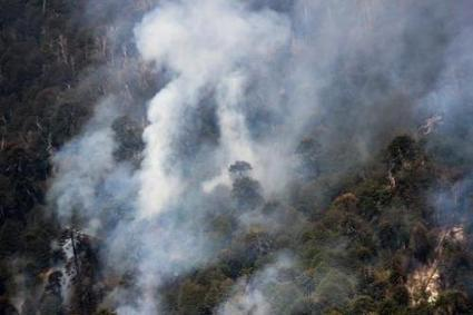 Chile declares red alert as forest fires rage | GarryRogers NatCon News | Scoop.it