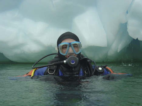 Warming Up After a Cold Dive | All about water, the oceans, environmental issues | Scoop.it